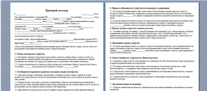 Пример брачного договора в России
