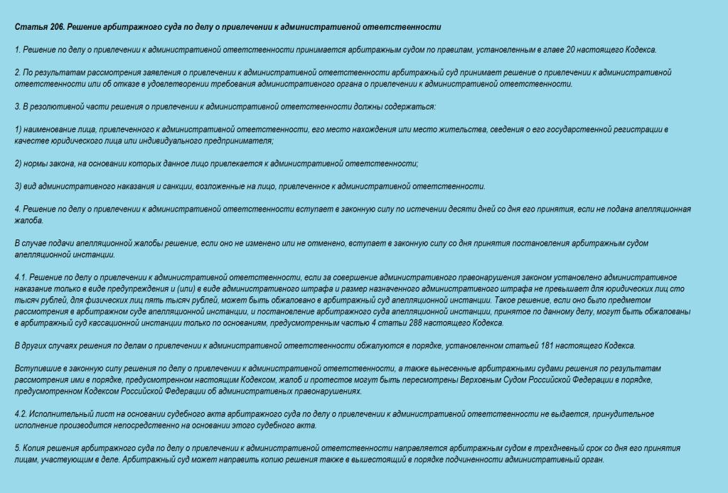 Статья 206. Решение арбитражного суда по делу о привлечении к административной ответственности