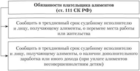 Дополнительные обязанности плательщика