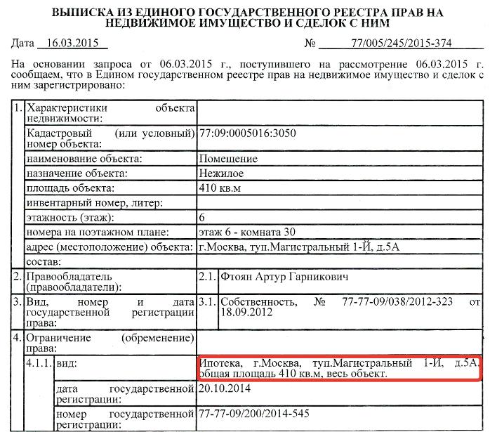 Пример выписки из единого государственного реестра