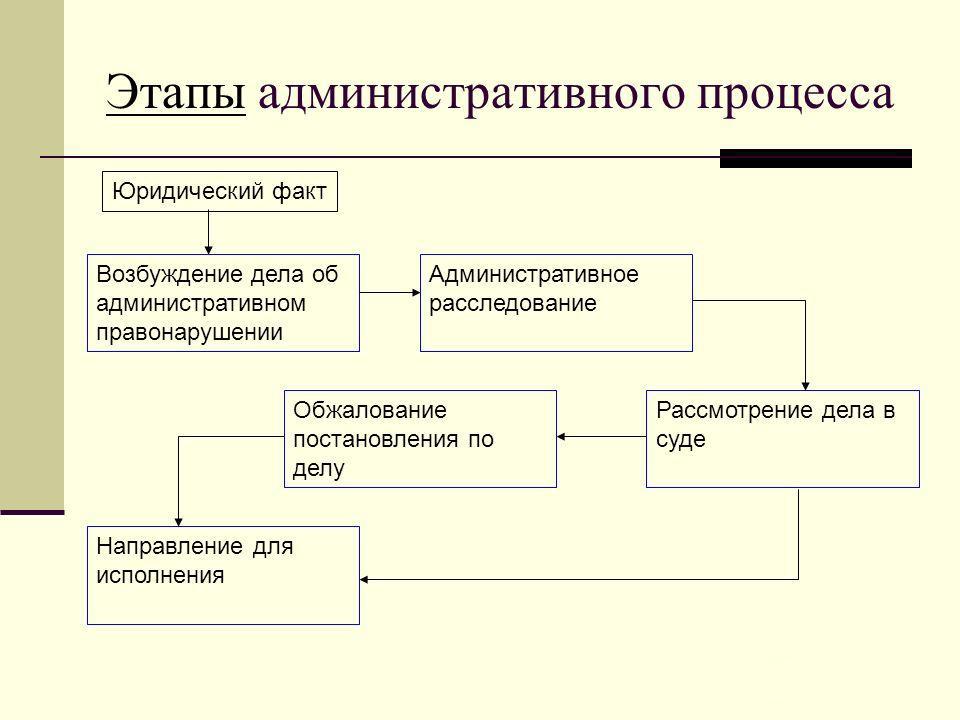 Этапы административного процесса