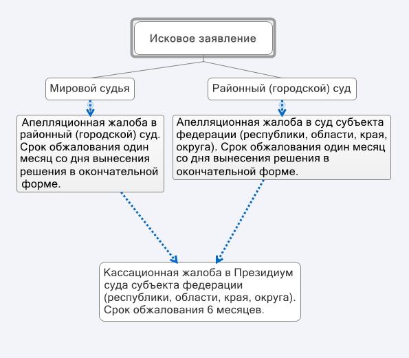 Схема подачи апелляционной жалобы
