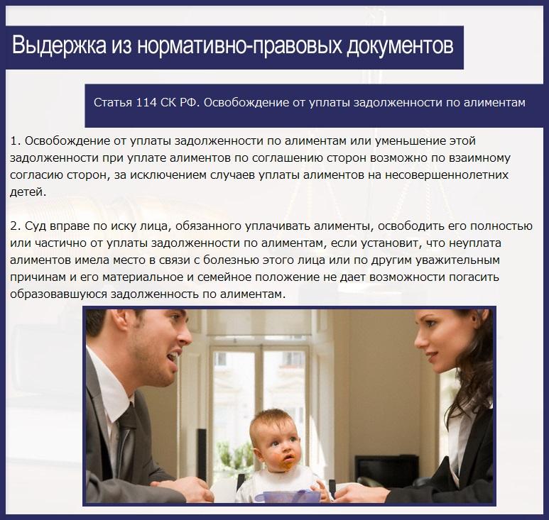 Статья 114 СК РФ. Освобождение от уплаты задолженности по алиментам