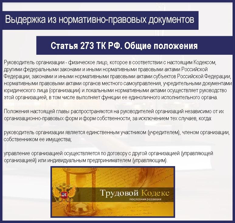Статья 273 ТК РФ. Общие положения