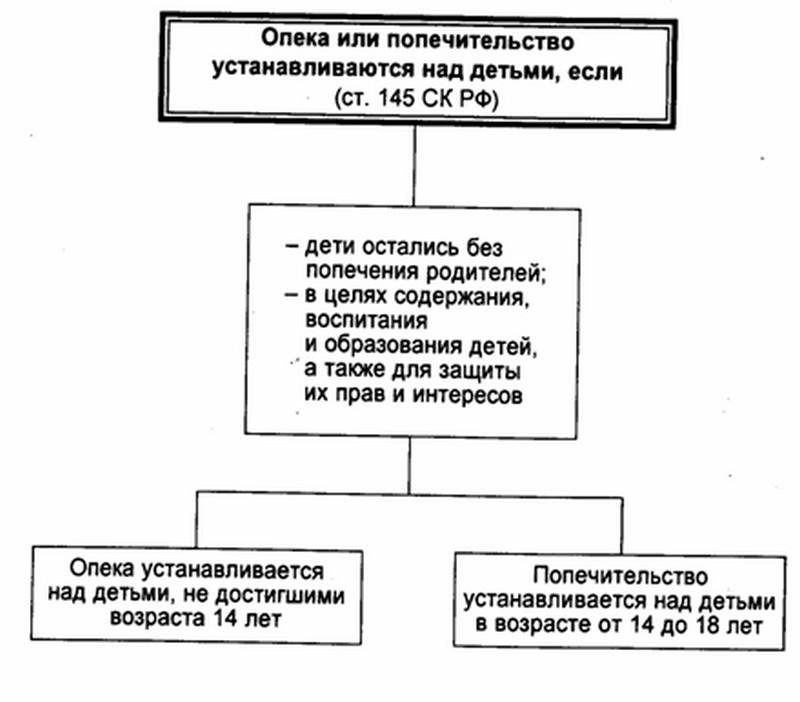 Причины установления опекунства или попечительства над детьми