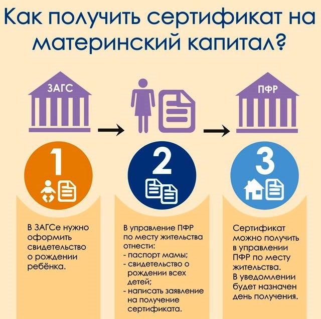 3 шага к получению сертификата на материнский капитал