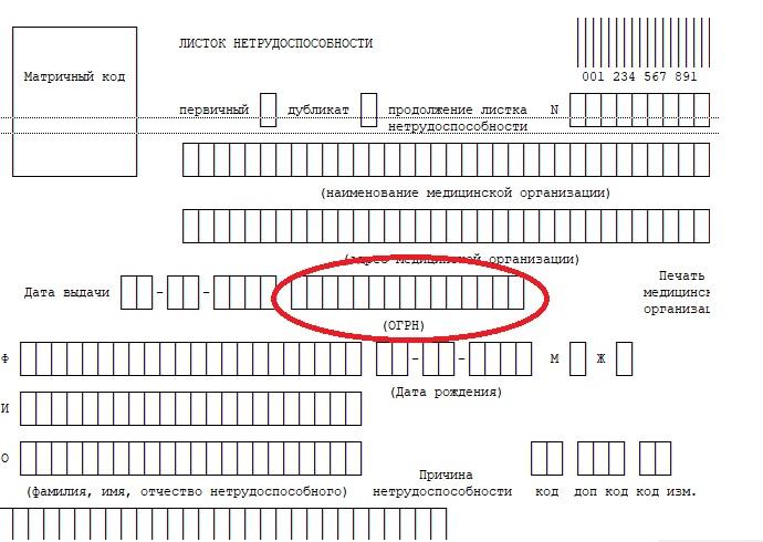 Раздел «Основной государственный регистрационный номер (ОГРН)»