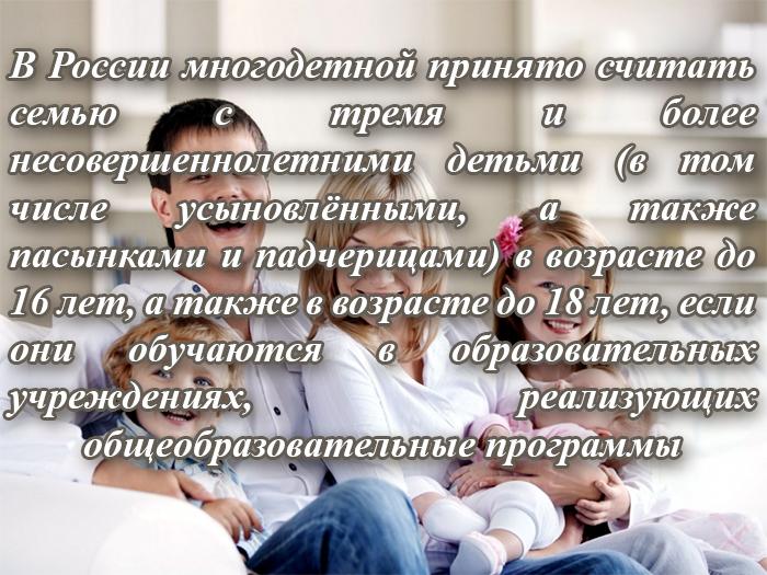 Понятие многодетная семья в России